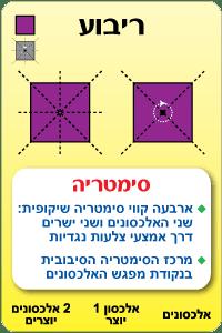 קלף סימטריה בריבוע